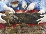 """シベリアで子どもの""""氷漬けミイラ""""が発見される! 内臓がバッチリ残存、解剖結果に専門家驚愕!"""