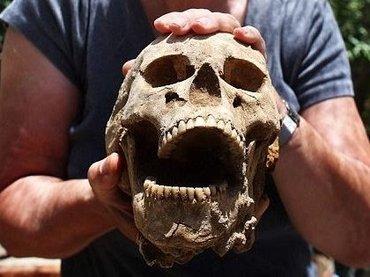 聖書に登場する巨人兵「ペリシテ人」の遺骨が大量出土! 150体が眠る墓地の発掘調査が公開される