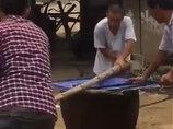 【閲覧注意】犬を生きたまま釜茹でに…! 犬1万匹が食い尽くされる中国「ライチ犬肉祭り」の無慈悲さがハンパない