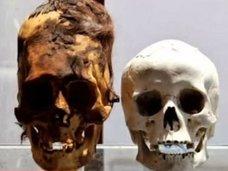 """宇宙人か、古代人か? 南極大陸で世にも異様な""""長頭頭蓋骨""""が発見される!"""
