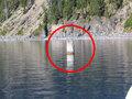 """100年以上""""直立したまま""""超スピードで湖面を漂い続ける丸太の謎! 無理に移動させると大嵐発生、学者も困惑=米"""