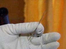 """5万年前の世界一古い""""針""""が発見される! しかも、ホモサピエンスが作ったものではなかった!=ロシア"""