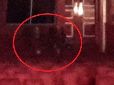 バレエを観劇する幽霊たちが激写される!劇場支配人も認める「5体の霊」とは?=英