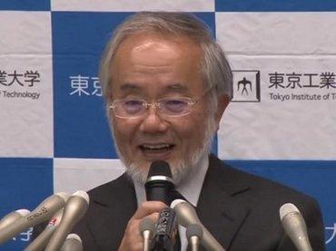 【ノーベル賞】不食人間とはオートファジーが超活発なニュータイプか!? 科学ライターが解説!
