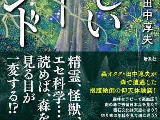 【【インタビュー】樹海、明治神宮、縄文杉…日本の不思議な場所やオカルトとの向き合い方を森林ジャーナリストが語る!