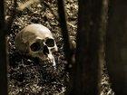 """奇習! 地面に""""生えた""""死人の首、もしも野獣が完食したら…!? 珍妙すぎる自然葬の思想的背景とは?=鳥取県"""