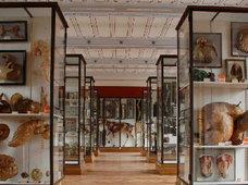 パリの「フラゴナール博物館」に世界最高傑作といわれる人体標本<世紀末の騎士>を観に行った!