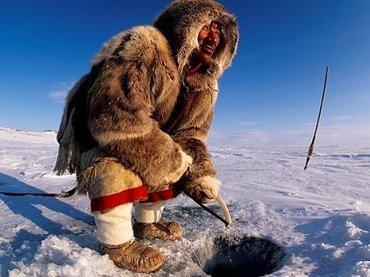 カナダ北極の海底から不可解すぎる「謎の怪音」、動物が1匹残らず消失! 軍が調査も「原因不明」