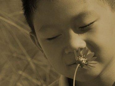 奇習! 生理中の女性がわかる特殊な嗅覚を持つ人々 ― 村民全員に備わる異能「犬鼻」の神秘=静岡県