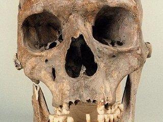 """「フォーブス」も取り上げた""""中世の女巨人""""の骸骨とは? 手足が折り曲げられた状態で埋葬!=ポーランド"""