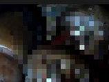 【閲覧注意】生きたままカニバリズム ― ベネズエラの刑務所で起きたおぞましい食人の悪夢