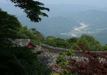 【韓国】本当だった「1000体超の遺体を山林で発見事件」! 宗教団体が50年以上、信者を埋めていた?