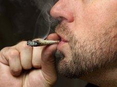 妄想・錯乱・フラッシュバック…! 大麻(マリファナ)が酒・タバコよりも危険な理由を理系が解説