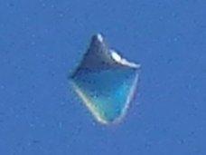 """【衝撃画像】空を泳ぐ「クラゲ型半透明UFO」が激撮される! エヴァの第五使徒""""ラミエル""""にもそっくり=米"""