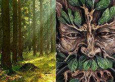 森林の精霊「グリーンマン」と会った男 ― 葉っぱに覆われた妖精が現れたその時…