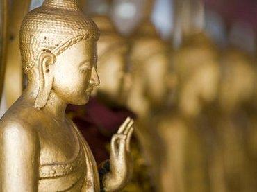 脳科学が仏教に同意「無我を全面的に認める」! 一方、ダライ・ラマは「科学に改宗してもいい」