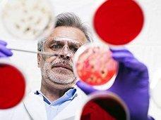 """【衝撃生物学】微生物に記憶力があることが判明!しかし""""ある理由""""から記憶喪失に…!"""