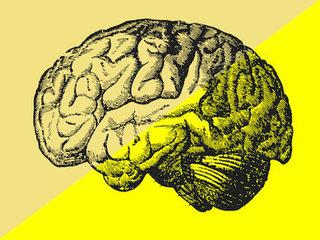 """知的な人ほど""""怠惰""""で""""痩せている""""ことが判明! 素早いデブは絶望的(最新研究)"""