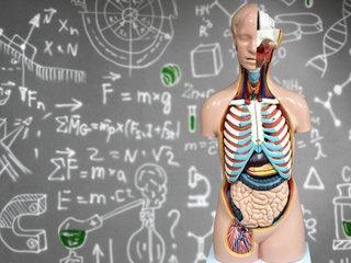 【医学教育で解剖学が軽視されている!2030年、身体の構造を知らない医師ばかりになる!