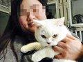 ペットショップへの腹いせ!? 返品拒否された女が、飼い猫の皮を剥いで店頭に遺棄