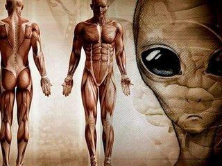 「地球=宇宙人の刑務所」だった! 生態学者が示す4つの証拠とは?