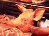 【閲覧注意】首を切り落とされても暴れまわる豚が恐すぎる! 死に抗う動物のハンパない生命力