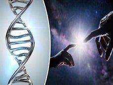 """自然界には存在し得ない「半合成生物(E. coli)」が誕生! 理学博士が""""人工DNA""""のリスクと意義を緊急解説(最新研究)"""