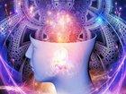 """「意識は高次元空間と繋がっている」ロンドン大教授が主張! 幽霊やテレパシーなど""""非物質的な次元""""の実在を語る"""