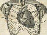 【閲覧注意・奇病】心臓が胸から突き出て、顔の前で暴れまくる! 心臓脱症ベイビーの悲劇