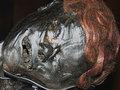 """泥炭地で発見された「生きているようなミイラ」5選! 4000年前の人間が""""苦悶の表情で""""今そこにいる不思議"""