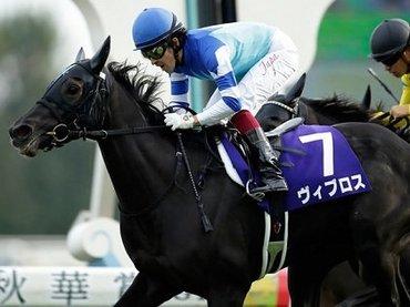 早稲田大学特任教授も徹底予想! 賞金6億円の謎のギャンブル「ドバイミーティング」と「高松宮記念」で週末はボロ儲け!!