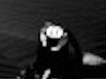 """火星で""""カニのような甲殻類""""がまた発見される、超クッキリ! 専門家「カニは強い生命力をもっている」"""
