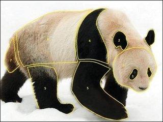 """【ガチ科学】ついにパンダが白黒である理由が解明! 理学博士「この色で""""最強の力""""を得ている」"""