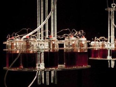 """""""血の音""""を使った音楽がヤバすぎる! ロシア人アーティストが自らの血液4.5リットルで制作"""