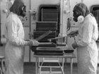 【VX・サリン】英国が封印した悪魔の「人体実験」で毒性検査!? 神経ガスの歴史と仕組みの全貌