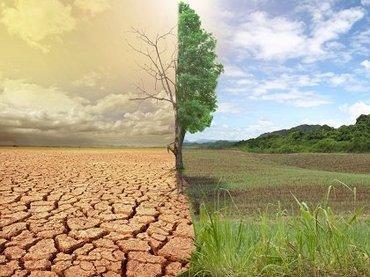 """【衝撃】サハラ砂漠は""""人工砂漠""""だった! 科学メディアの発表に大反響、定説覆る可能性"""