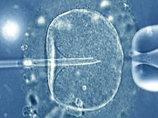 人間は将来、記憶力もホルモン機能も消失する…20万年後の「人類の進化5つの予想」が残念すぎる!
