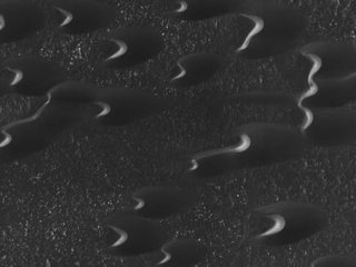 NASAが火星表面でヘビの大群を激写!? 英紙「自然に形成されたとは思えない」