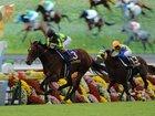 """4月30日、京都から貧乏人が消える!? 奇跡を呼ぶ """"第三の馬""""が出現か!"""