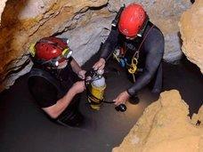"""550万年も封印されていた「モビル洞窟」がヤバすぎる! 独自の生態系と謎の生物48種が暮らす""""地底の異世界""""の謎=ルーマニア"""