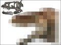 """ティラノサウルスの""""本当の顔""""が残念すぎる! やはり鳥ではなくトカゲ顔だったことが判明(最新研究)"""