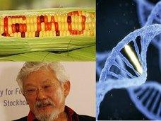【「遺伝子組換え食品は人体実験」 有名生物学者デヴィッド・スズキが暴露!