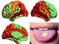 世界初、LSDが「高次の意識状態」を生み出していることが脳科学で判明!キマッている時は無我の境地か!?