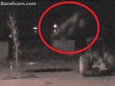幻の幽霊オオカミ「ミシガン・ドッグマン」が宙を舞う瞬間を激撮! ナバホ族も危惧する幻型生命体「シェイプシフター」との指摘も