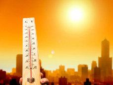 【世界的な糖尿病の増加に「気温の上昇」~地球の温暖化が脂肪を燃えにくくする!?
