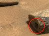 火星で小人用の出入口が発見される! NASA公式画像で判明、研究家も興奮「100%エイリアンがいる」