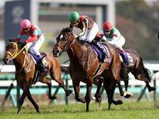 日本ダービーの上位馬3頭を予告! プロ集団がとんでもないビッグスクープを暴露か!?