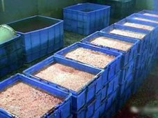 """「価格は正規品の20分の1」中国で流通する""""激安加工食品""""の正体は……"""