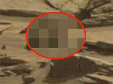 """火星の大地を散歩する""""トカゲ""""をNASAが再び激撮! """"謎の紋章とドア""""も同時発見される異常事態"""