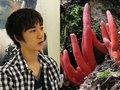 人を自殺させるキノコからワライタケまで… 天才中学生キノコ博士が明かした「最凶猛毒キノコ4選」がヤバすぎる!!(インタビュー)